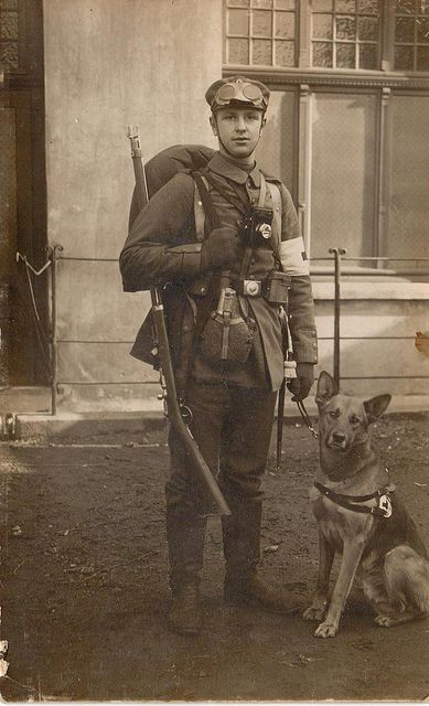 medic with his dog